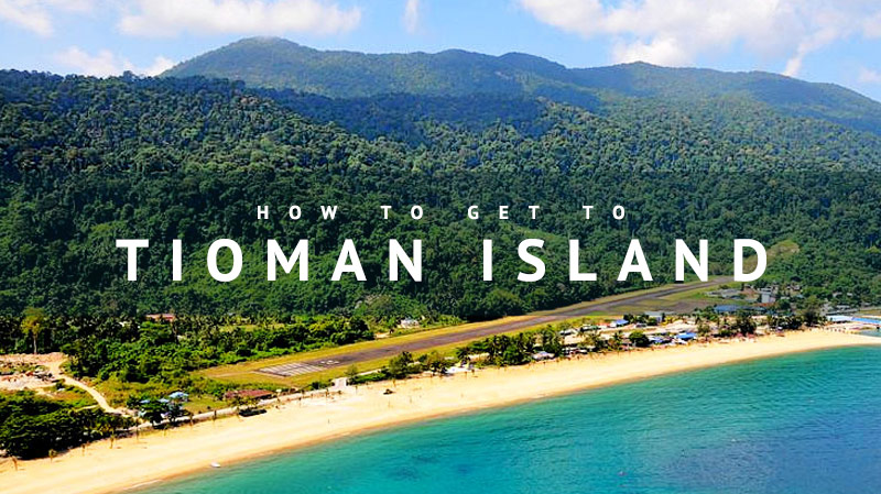 """a trip to tioman island essay Tioman research essay""""to what extent has human activity transmuted the natural environment on tioman island essay locator map of tioman island trip the."""